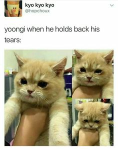 Not MY YOONGI BEAR. This makes my heart clench inside and protect himmmmmM