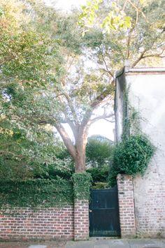 Charleston secret garden For the background of announcement pics?