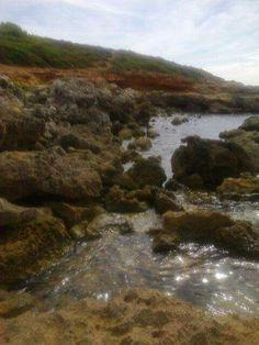 Alghero: Porto Ferro