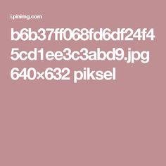 b6b37ff068fd6df24f45cd1ee3c3abd9.jpg 640×632 piksel