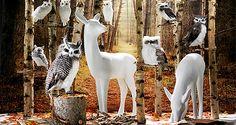 Entdecken Sie eine große Auswahl an verblüffend echt aussehenden #Waldtieren als Motto für Ihre #Walddekoration. #Herbstdeko #Dekoration #Dekotiere http://www.decowoerner.com/de/Saison-Deko-10715/Herbst-Halloween-10754/Waldtiere-10762.html