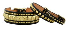 cool dog collar   Gold Luxury Studded Dog Collars