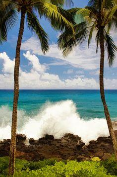 Hawaii | Babylon and Beyond Photography