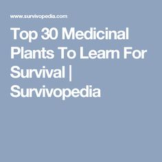Top 30 Medicinal Plants To Learn For Survival | Survivopedia