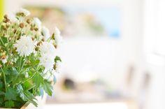 Modern Interior Home Flower