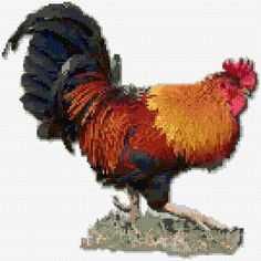 Cross Stitch Embroidery free chart, rooster - Free cross-stitch design 'Rooster', 135 x 135 stitches 40 colors Rooster Cross Stitch, Chicken Cross Stitch, Cross Stitch Kitchen, Cross Stitch Needles, Cross Stitch Animals, Cross Stitch Calculator, Free Cross Stitch Charts, Cross Stitching, Cross Stitch Embroidery