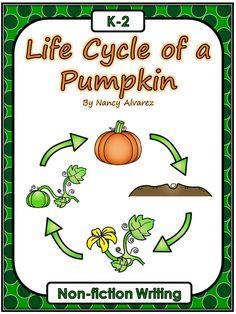 Free Life Cycle of a Pumpkin - Non-fiction Writing Activity Kindergarten, first grade, second grade, writing, pumpkins