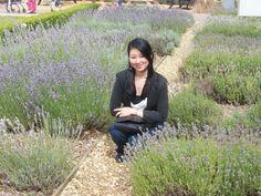 IFPA Member Emi at Norfolk Lavender Farm