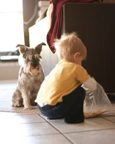 Lauren Weeks Photography captured this adorable shot of her toddler and dog sneaking some animal crackers.