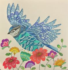 Bird - flowers  Animal kingdom- Millie Marotta- birds - color me, Draw me