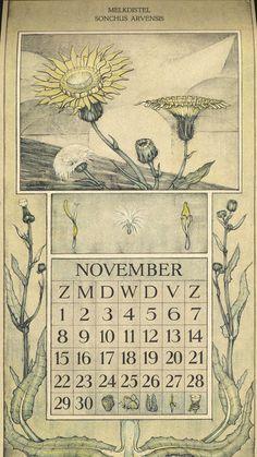Le Roy, Charles, illustrator. November. Botanische kalender (Dutch botanical calendar). 1925.