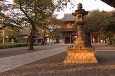 """√    One of the Famous temple in Tokyo,""""Ikegami HonmonJi.  Scene of Autumn Leave's"""
