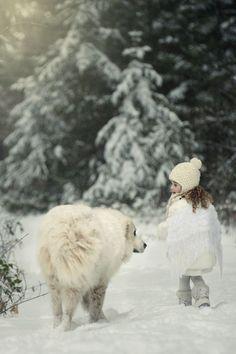 White English Cream Creme Golden Retriever ♔ I will follow | by Viktoria Haack
