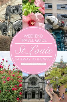 The ultimate guide to spending a weekend in St. Louis, Missouri, including where to stay, what to do (most of which is completely FREE), and where to eat! A must-read for anyone planning a fun and affordable getaway to the Gateway City | Gateway to the West: St. Louis Weekend Travel Guide by blogger Stephanie Ziajka from Diary of a Debutante #travel #stlouis #missouri #forestpark #travelguide