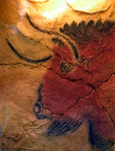 Altamira Cave Painting (Detail) -- Spain -- 12,000 BCE -- Endangered UNESCO World Heritage Site -- Northern Spain's Altamira Cave Paintings -- Dating back 14,000 years -- Discovered in 1879 closed to the public in 2002 following the discovery of bacteria which thrived under the artificial light. Since the cave's closing, the bacterial growth has abated.