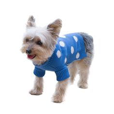Stinky G Royal Blue Polka Dots Dog Pet Sweater With Rolled Neckline ** To view further, visit now : Dog sweaters