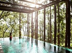 Loving the forest view at ANANDA IN THE HIMALAYAS, INDIA: A destination spa that offers a number of wellness packages that help with everything from weight management to Ayurvedic rejuvenation to stress management. Detox Retreat, Health Retreat, Infinity Pools, Spas, Bridal Shower Venues, Wellness Resort, Wellness Spa, Wellness Center, Meditation Retreat