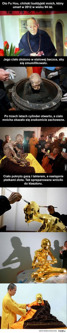 I like how legit all the monks r taking pictures with their phones. WTF monks don't use modern day technologies. it's against their beliefs Wtf Fun Facts, True Facts, Funny Facts, The More You Know, Did You Know, Just For You, I Can, Post Mortem, Creepy Stories