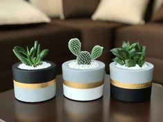 Painted Plant Pots, Painted Flower Pots, Cement Flower Pots, Painted Pebbles, House Plants Decor, Balcony Plants, Pots For Plants, Decoration Plante, Growing Succulents