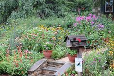 Love overgrown flower gardens