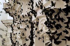 Black Cloud paper. L'artiste mexicain Carlos Amorales nous dévoile cette superbe installation appelée Black Cloud. Aidé d'une équipe, l'artiste a posé plus de 30 000 papillons de papier noir.
