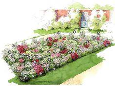 Comment créer un tableau floral avec des vivaces colorés et des bulbeuses