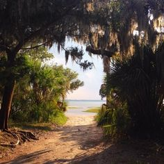Peaceful day on Cumberland Island.