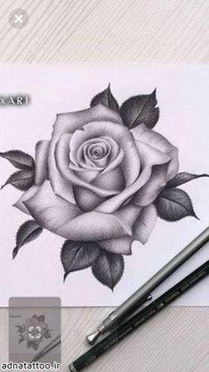 Flower Wrist Tattoos, Flower Tattoo Designs, Hand Tattoos, Sleeve Tattoos, Rose Drawing Tattoo, Tattoo Drawings, Rose Tattoo Man, Rose Drawings, Rose Tattoo On Hand