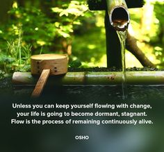Unless you can keep yourself flowing with change, your life is going to become…