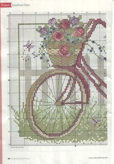 bike and roses 1