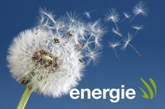 Erneuerbare Energien für Generationen CI & Webpräsenz ENERGIE AG Erarbeitung CI (Relaunch Logo, Imageprospekte, Autobeschriftung) und  Neugestaltung der Webseite Auftraggeber: rcm – research management consulting