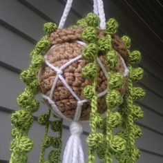 Yup, you read right, you can now crochet a succulent. And in this particular piece, you shall be learning how to crochet a string of pearls succulent. Crochet Flower Patterns, Crochet Patterns Amigurumi, Crochet Flowers, Crochet Stitches, Crochet Afghans, Crochet Blankets, Dishcloth Crochet, Crochet Cactus, Crochet Leaves