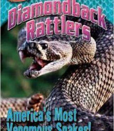 Diamondback Rattlers: America'S Most Venomous Snakes! By Nancy White PDF