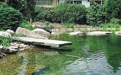 """Képtalálat a következőre: """"swimming ponds home gardens"""""""