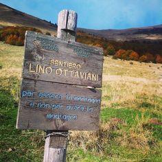 ... To BE THE MOUNTAIN not to HAVE the #mountain!!! #rifugiofioridelbaldo #verona #italy #foliage #igerseverywhere #trekking #LaPellicolaCheNonCe