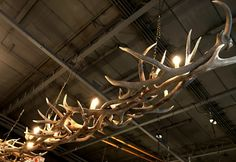 Long lamp made of deer antlers. The lamp is made up of a large number of capital antlers. These lamps can be made larger or smaller as desired. Also, they can