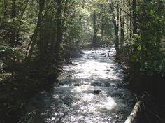 North Creek Campground