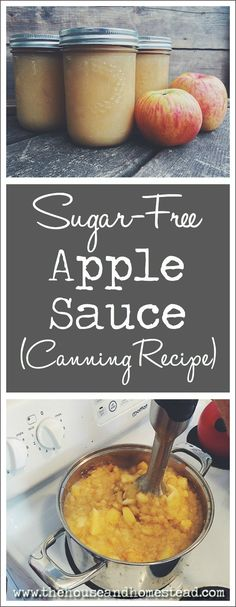 This sugar-free homemade applesauce is great for baking, baby food or eating straight out of the jar. It can be stored in the freezer or canned for long-term storage in the pantry. Canning Applesauce, Homemade Applesauce, Sugar Free Applesauce Recipe, Canning Tips, Canning Recipes, Homemade Baby Foods, Low Sugar, Baby Food Recipes, Free Recipes