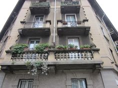 Urban balcony with succulent plants.
