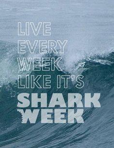 In honer of shark week