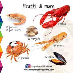Italian Grammar, Italian Vocabulary, Italian Phrases, Italian Words, Italian Quotes, Italian Language, Learn To Speak Italian, Italian Lessons, Spanish English