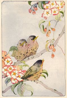 Prolific illustrator and watercolorist. This is Fledgling Robins - Janet Laura Scott  She illustrated many, many childrens books in the very early 20th Century.  I believe she was far more influential than anyone gives her credit for being.