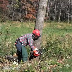 Bob Tacke, an expert at The Family Handyman, will show you the proper way to cut down a tree using a chainsaw. After watching this video, you will be able to make any tree fall where you want it to.