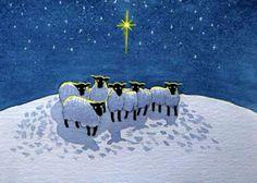 Christmas sheep!