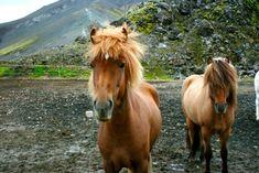 5 Tours You Won't Want To Miss In Iceland – Unlocking Kiki