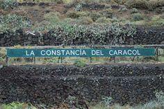"""La constancia del caracol"" #community #manager www.enomorate.com"