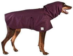 No more wet, damp fur! Our Ultrex Doberman Pinscher Rain dog coat with mesh lining is lightweight, breathable and waterproof - making it one of