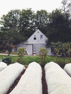 The Primo Restaurant Farm | Rockland Maine | Via @evakolenko instagram