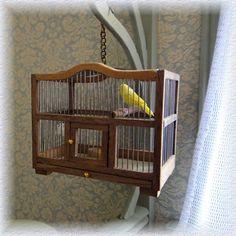 Workshop vogelkooi met toebehoren
