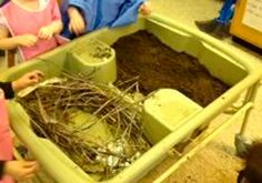 Awesome Lesson Idea Alert! An Ontario Kindergarten class learned about beavers by using their Copernicus Sand and Water Table to build beaver habitats! Students built their own beaver lodge using natural materials.  How neat is that?